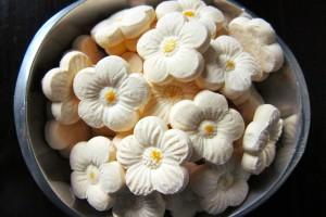 Resep Membuat Makanan Ringan Kue Bangkit Susu
